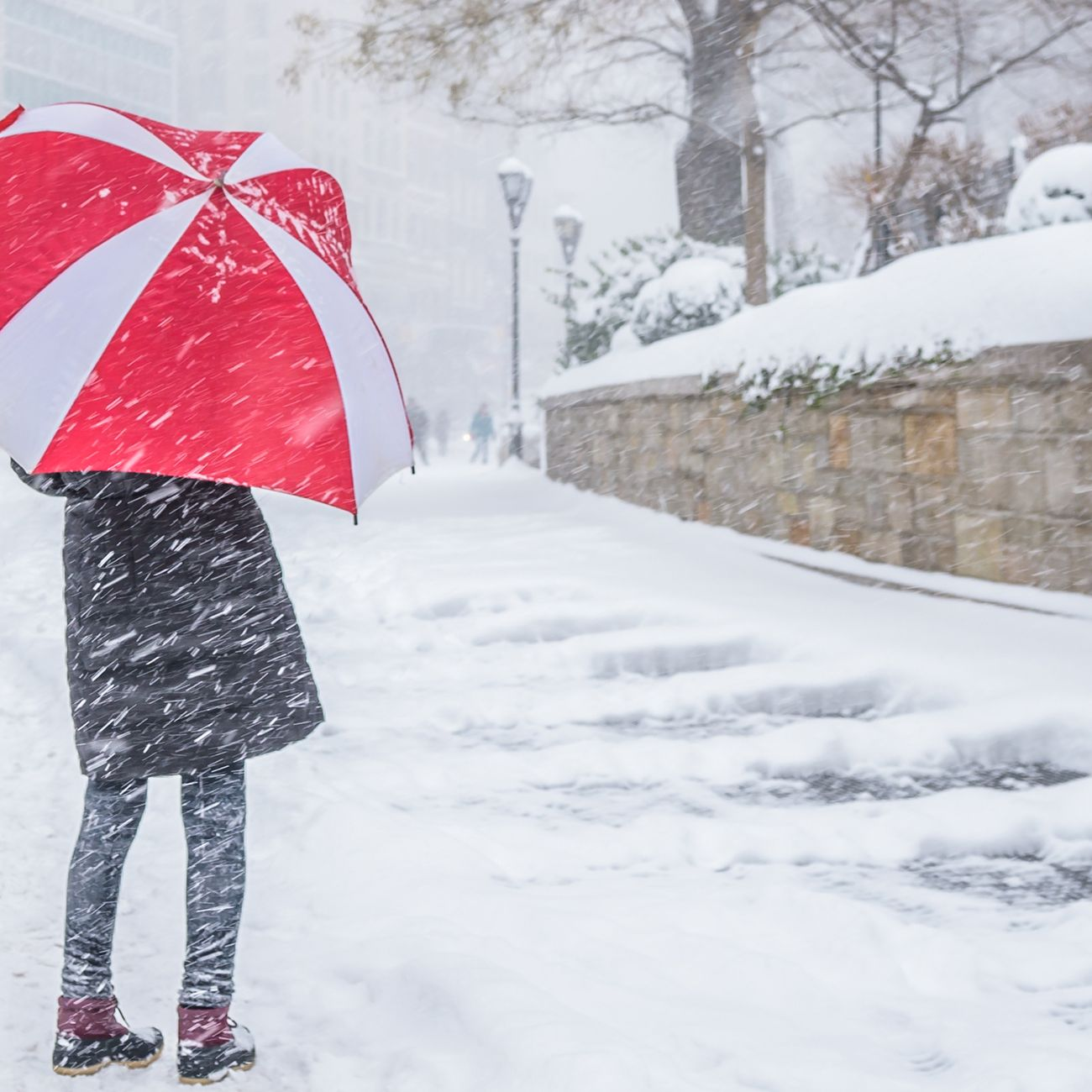 Brace Yourselves, a Dangerous Nor'Easter Is Coming to Ruin Your Weekend