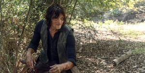 Norman Reedus as Daryl Dixon, The Walking Dead
