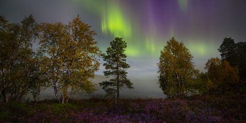 autumn northern lights in finland