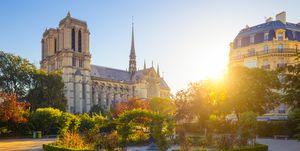 Notre dame de Paris during a sunny day , France