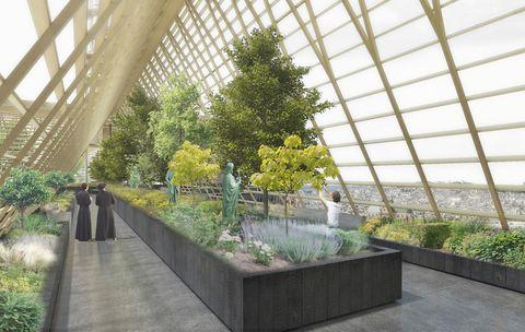 Ideas para reconstruir Notre Dame como un invernadero