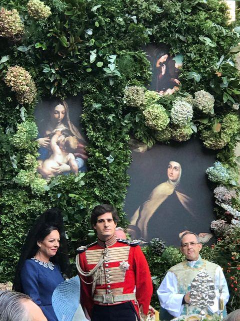 Fashion, Botany, Fun, Tree, Leisure, Plant, Photography, Shrub, Garden, Art,