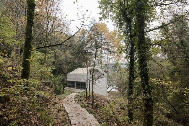 casa en el bosque de carvalho araújo