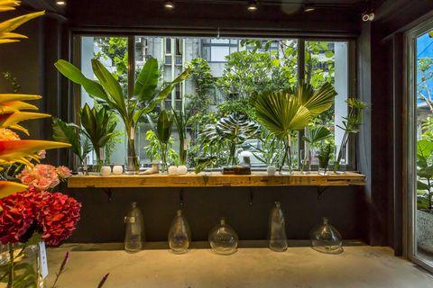 Interior design, Houseplant, Floristry, Botany, Floral design, Flower, Building, Room, Plant, Flower Arranging,