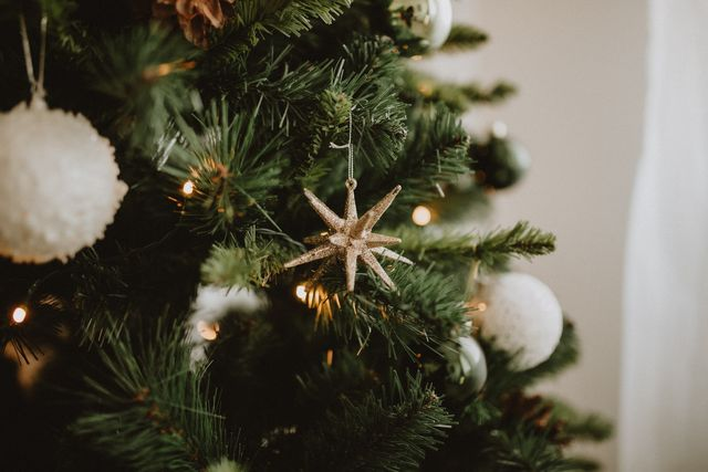 Addobbi Albero Natale.Come Addobbare L Albero Di Natale