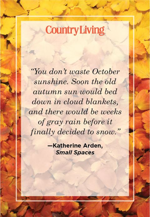 quote about october by katherine arden from small spaces