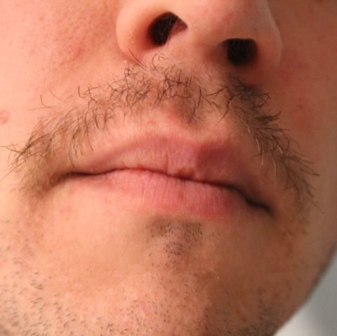 men's health paul kita movember mustache growing