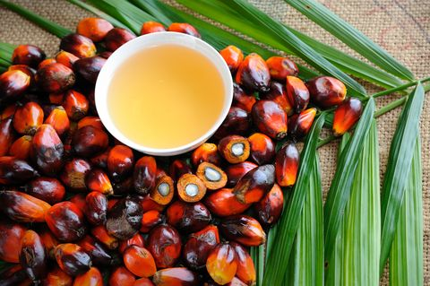 Oil palm fruits with cooking oil