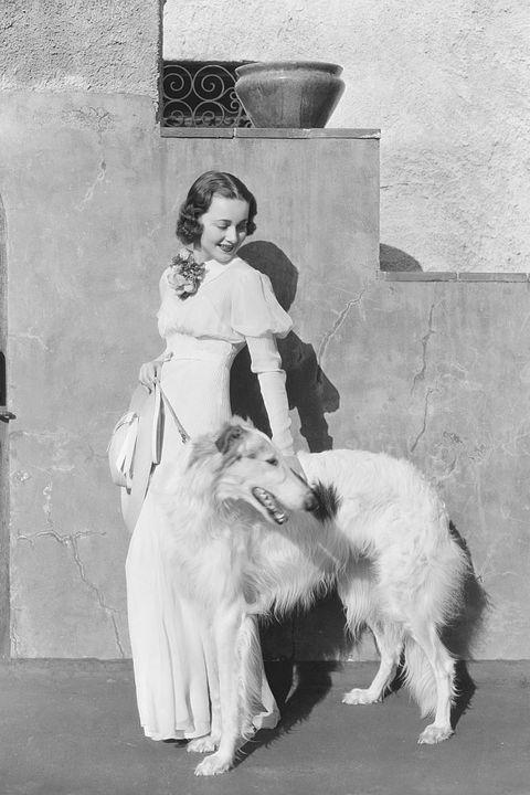 Human, Carnivore, Dog breed, Dog, Vintage clothing, Monochrome, Borzoi, Fur, Sighthound, Companion dog,