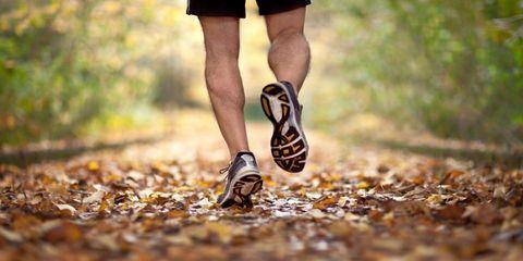 People in nature, Footwear, Running, Leg, Human leg, Shoe, Walking, Joint, Trail, Autumn,
