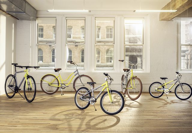 priority bicycles and pantone colors of the year bikes