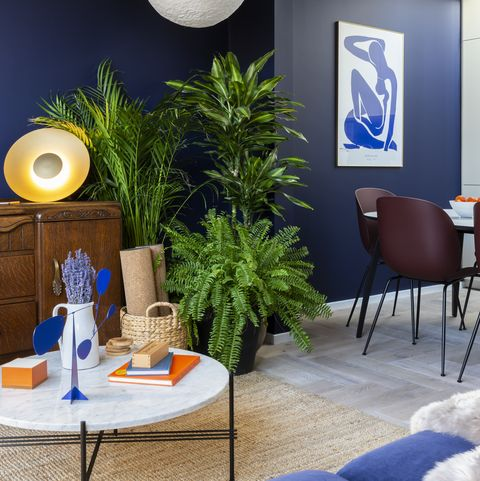 Blue, Living room, Room, Interior design, Wall, Majorelle blue, Furniture, Property, Table, Ceiling,