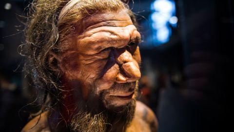 oorontsteking neanderthaler