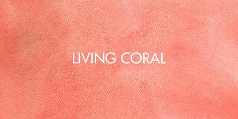 salón coral y azul Detalles Y Accesorios De Color Coral Para Vestir Tu Casa Con