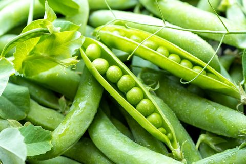Open green pea pods