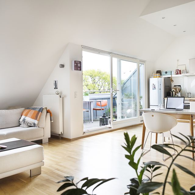 flat share with an open plan living roomdiner