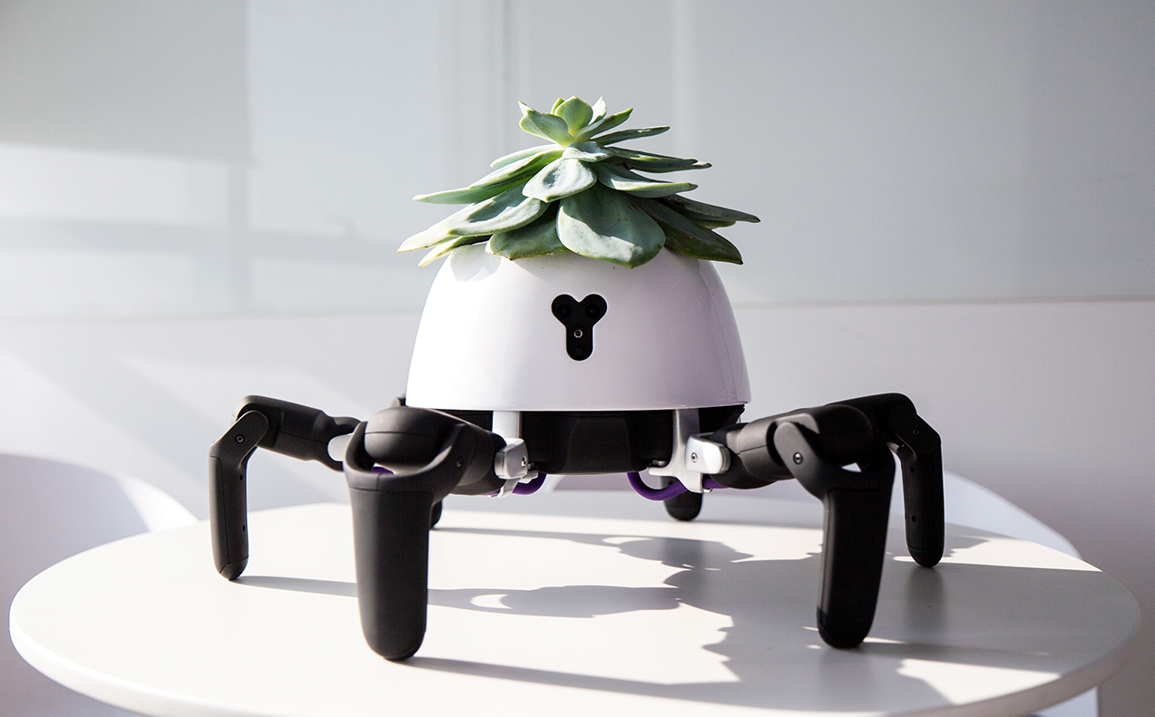 The Hexa Robot Chases the Sun to Keep Your Plant Happy