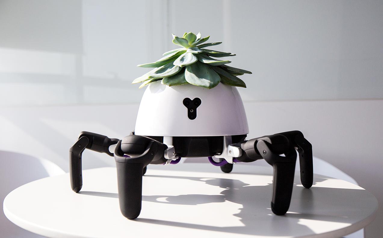 The Hexa Is Like Your Dream Robot Gardener