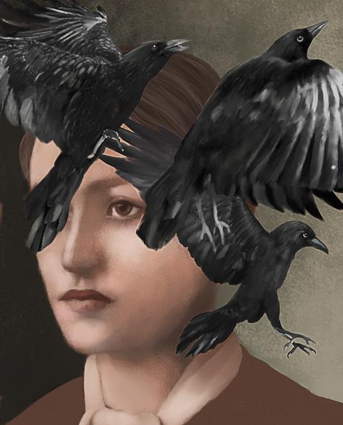 raven, Bird, Raven, Feather, Wing, Crow, Beak, Crow-like bird, Illustration, Blackbird,