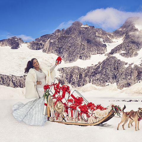 Sled dog, Dog sled, Mushing, Canidae, Sled dog racing, Dog, Snow, Winter, Northern inuit dog, Sled,