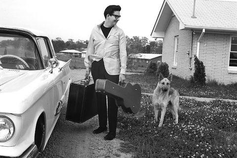 Dog, Canidae, Car, Vehicle, Carnivore, Sedan, House, Classic car,