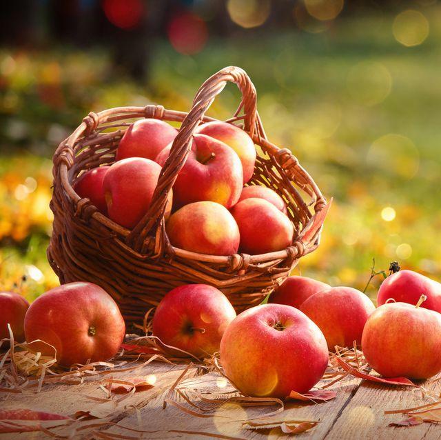 apples in a basket outdoor sunny background autumn garden