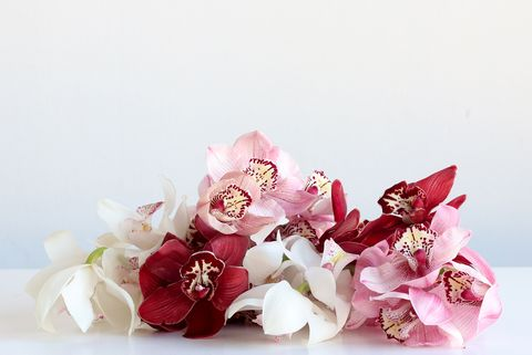 White, Pink, Cut flowers, Red, Flower, Petal, Plant, Bouquet, Still life photography, Artificial flower,