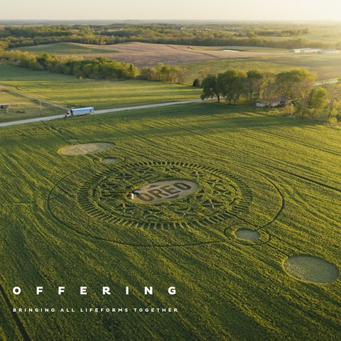 oreo crop circle
