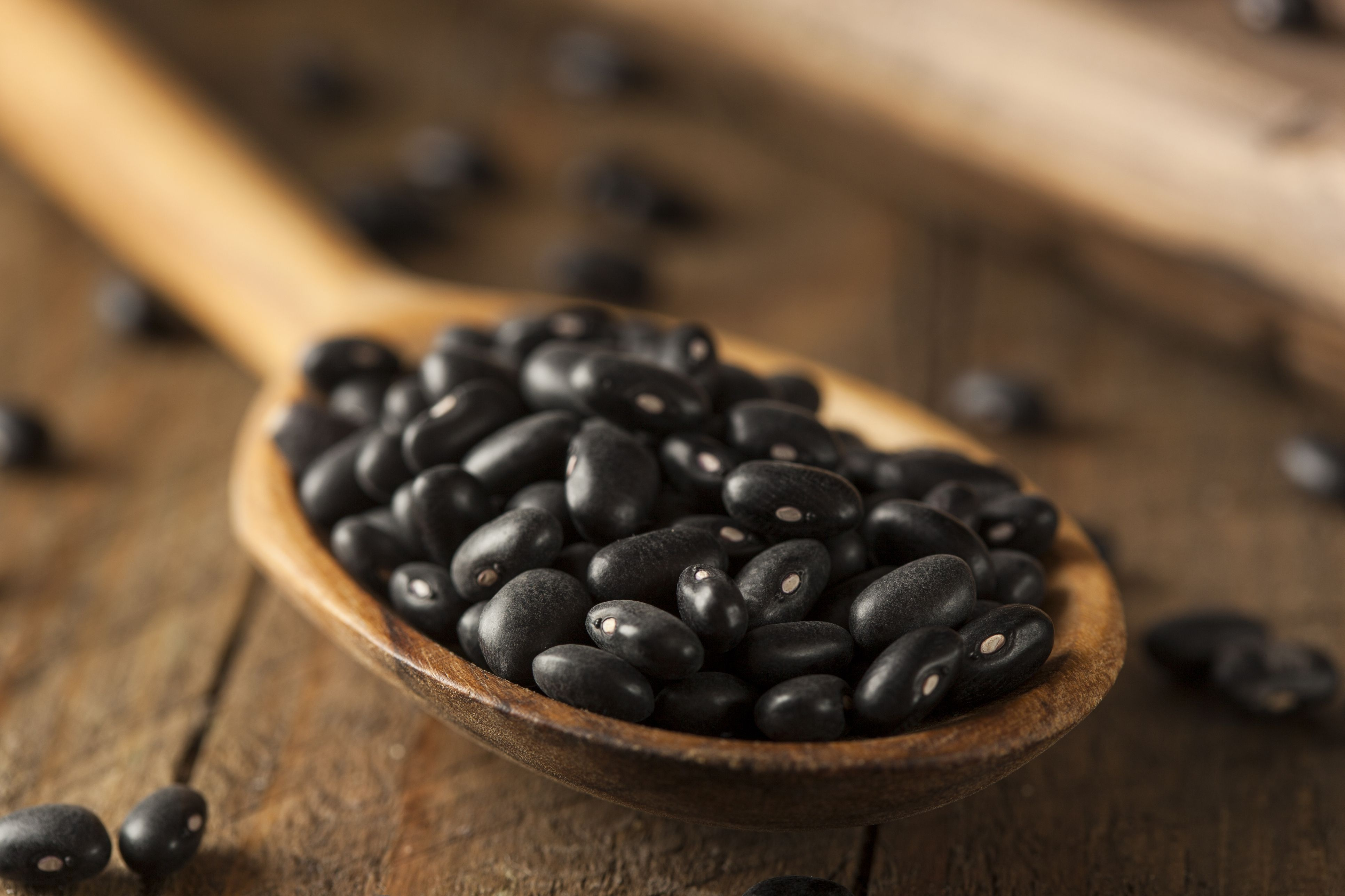 Organic Raw Dry Black Beans