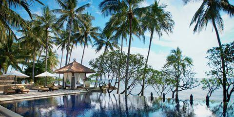 Resort, Swimming pool, Tree, Palm tree, Property, Vacation, Tropics, Arecales, Leisure, House,