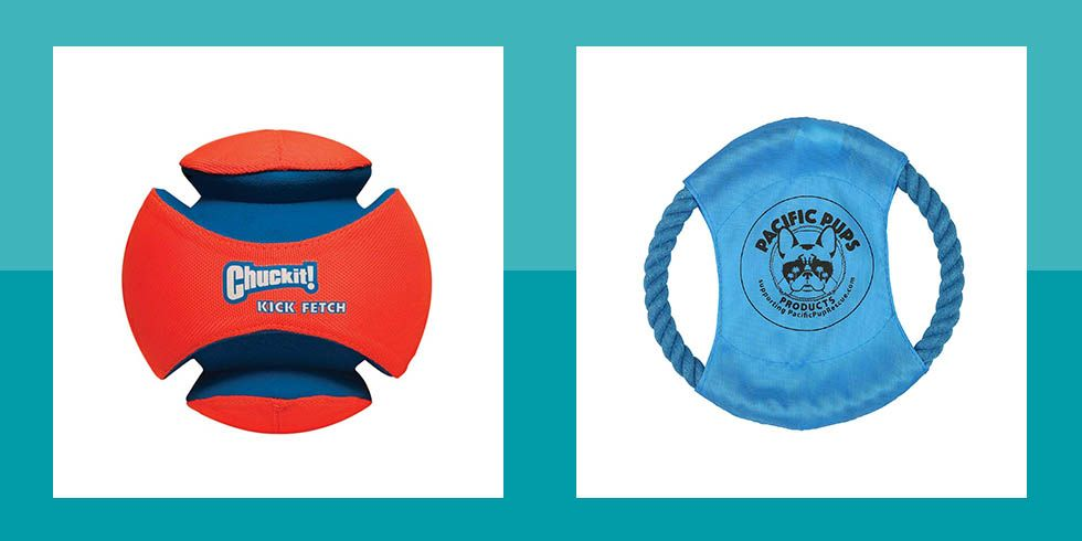 15 Best Outdoor Dog Toys - Backyard Toys Your Pup Will Love