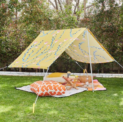 Tent, Canopy, Grass, Shade, Table, Recreation, Picnic, Camping, Plant community, Tree,