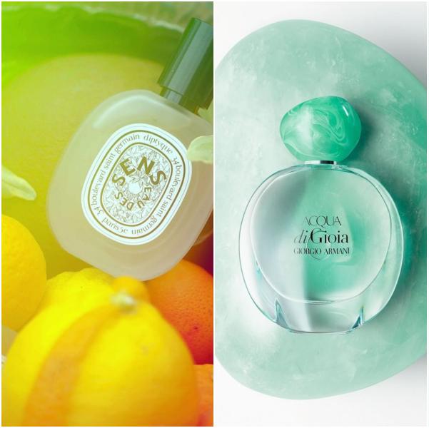 Product, Beauty, Perfume, Fluid, Cosmetics, Liquid,