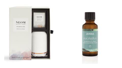 Product, Beauty, Liquid, Tree, Plant, Fluid,