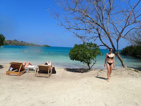Beach, Vacation, Sun tanning, Summer, Tree, Tourism, Sea, Water, Tropics, Fun,
