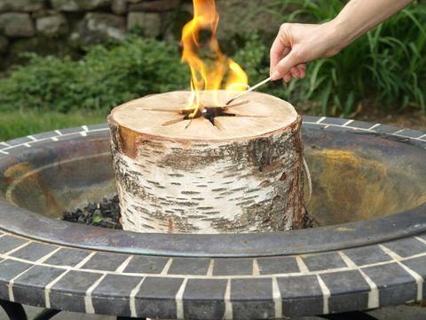 Essay Group Light n' Go Bonfire Log