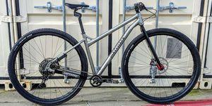 Lebron James custom bike