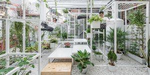pavilion of the origins de los arquitectos hung nguyen en Hanoi donde intentan generar aire limpio