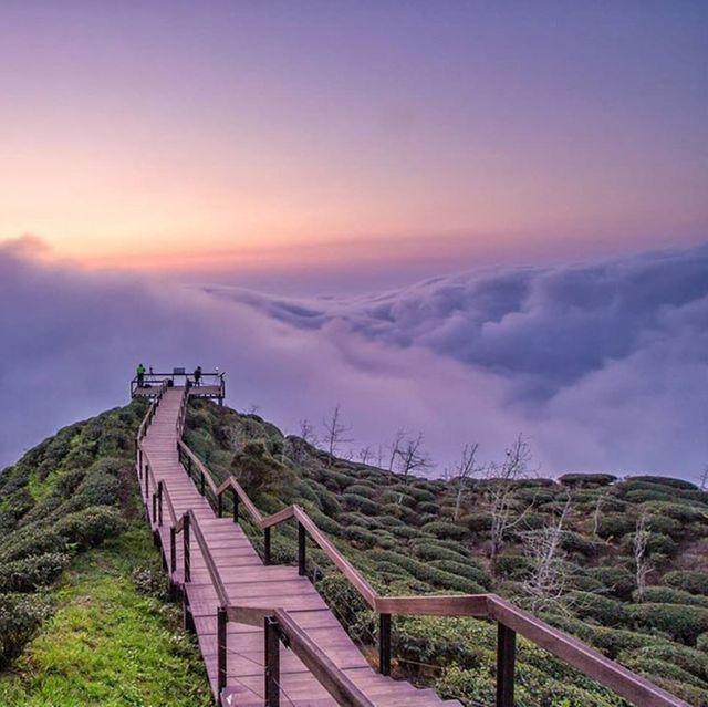 台灣6條「網美步道」推薦
