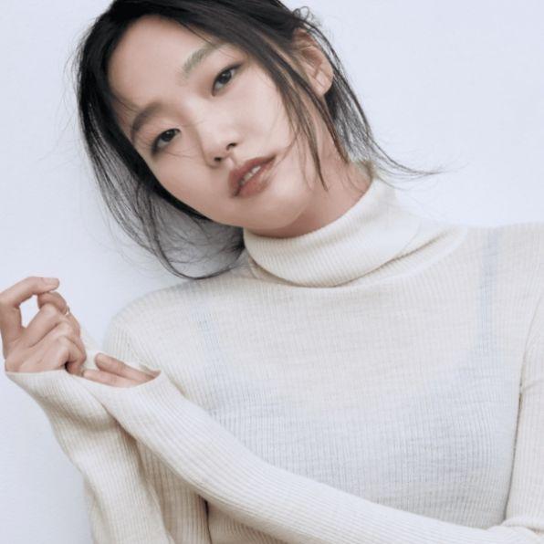 金高銀韓劇《柔美的細胞小將》