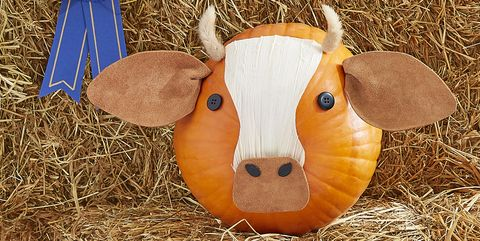 70 Painted Pumpkin Ideas For People Who Never Want To Another Carving Kit