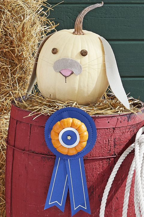 painted pumpkins bunny