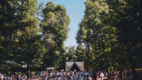People, Tree, Crowd, Sky, Woody plant, Leisure, Plant, Tourism, Park, Recreation,