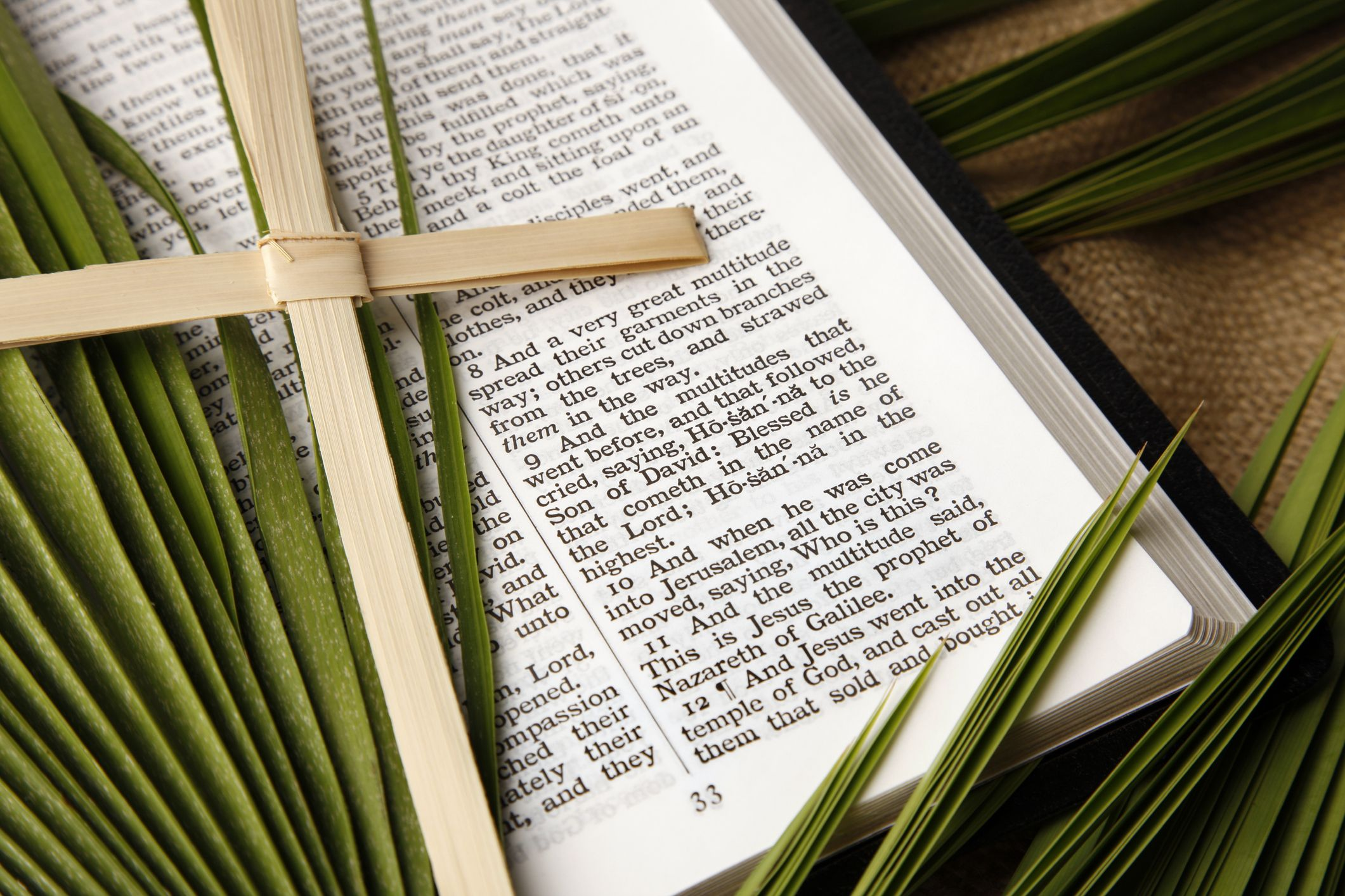 15 Palm Sunday Scriptures - Top Bible Verses for Palm Sunday