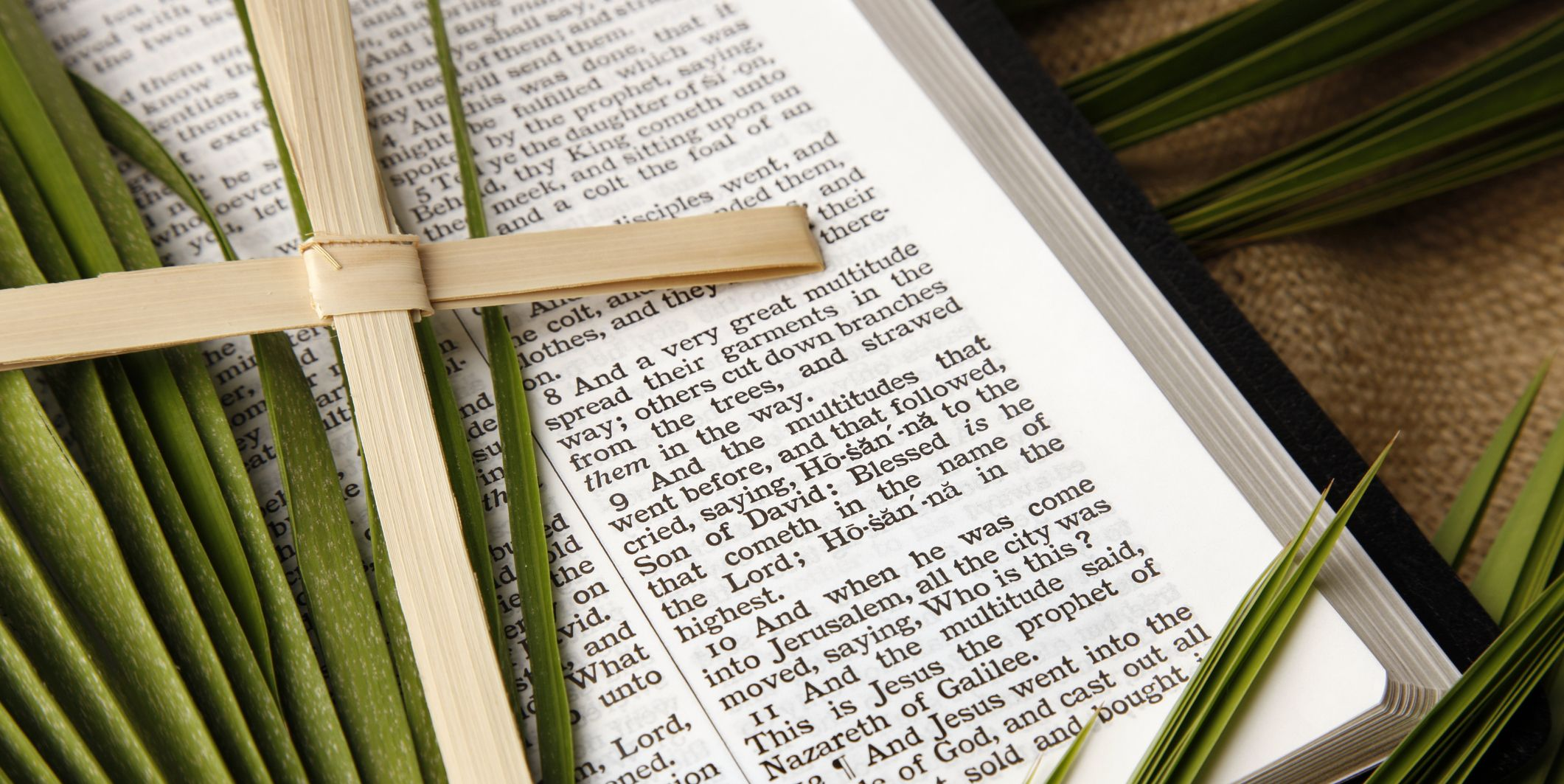 15 Palm Sunday Scriptures to Read Out Loud During Holy Week