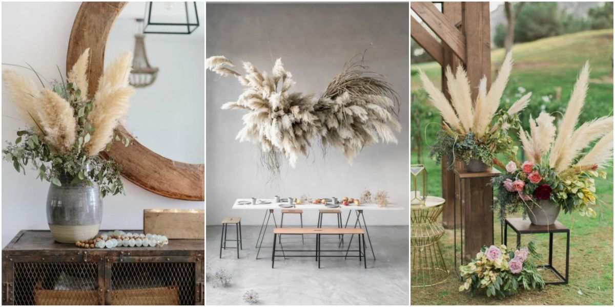 Pampas grass is the biggest interior design trend for spring 2018