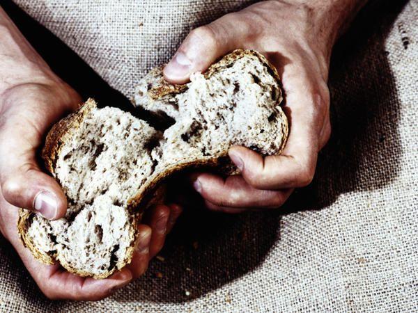 Pane e olio è la bomba che cura tutti i mali