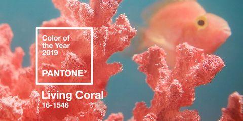Live Coral Pantone: Color del año 2019