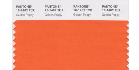 PANTONE 16-1462 TPX Golden Poppy