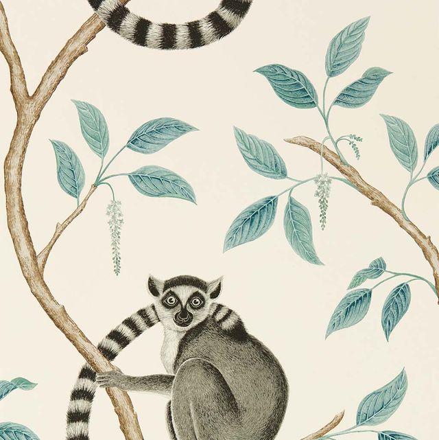 Papel pintado con lemur